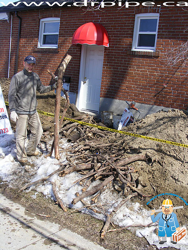huge-tree-roots-that-blocked-drain-pipe
